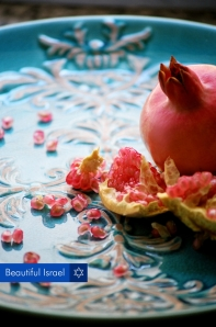 """Rimon"" (pomegranate), c Hila Weis"